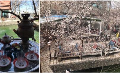رستوران سنتی و ارگانیک خاطره سبز